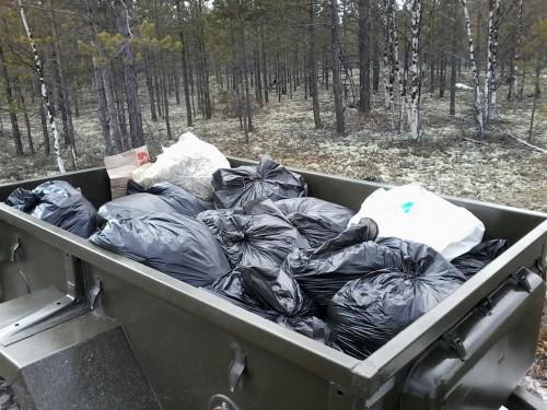 Вывоз листьев в лес