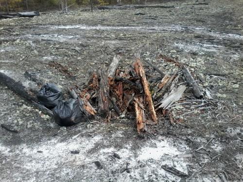 Подготовка компостной кучи из гнилого валежника