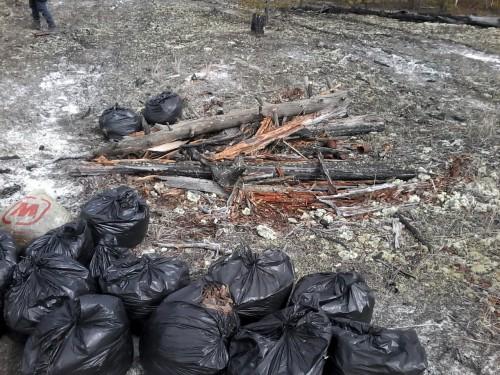 Мешки с опавшими листьями для компостной кучи